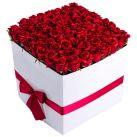 Send Roses in Box To Cebu