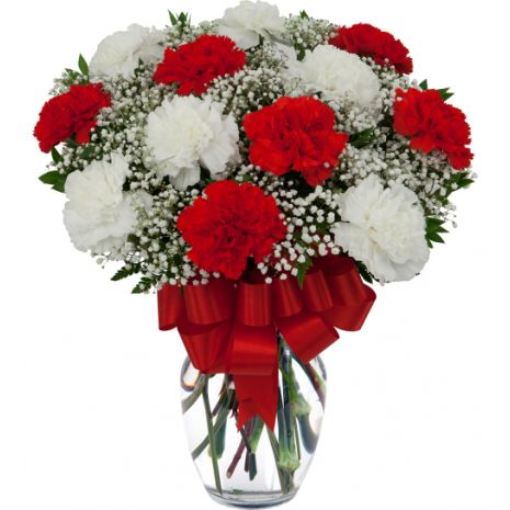 12 Red And White Carnations Vase